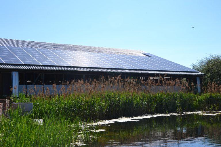 Photovoltaik bei der Jithofer Käserei